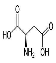 Aminoácidos ácidos - Artal