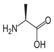 Aminoácidos alifáticos - Artal