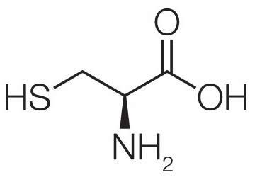 Aminoácidos sulfurados - Artal