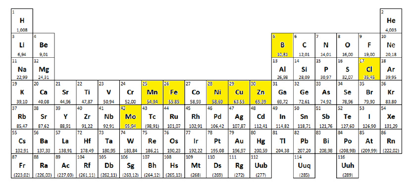 Periodic table with microelements highlighted - Artal